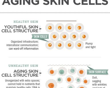 Infographic: The Science Behind Aging Skin Cells