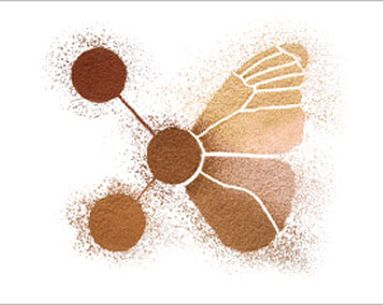 Fight Free Radicals With An Eco-Friendly Foundation