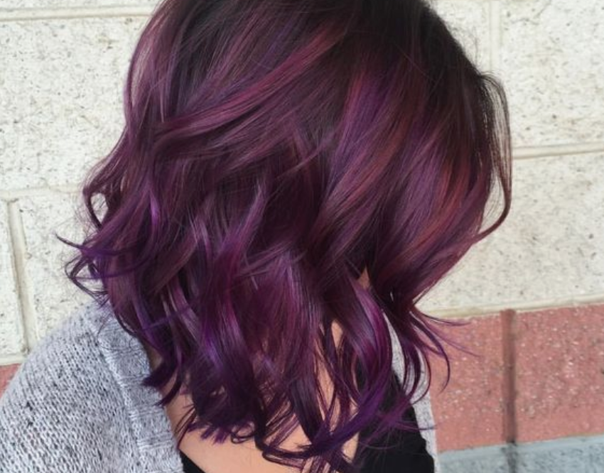 Blackberry Hair Color Hair Color Hair Dailybeauty The Beauty