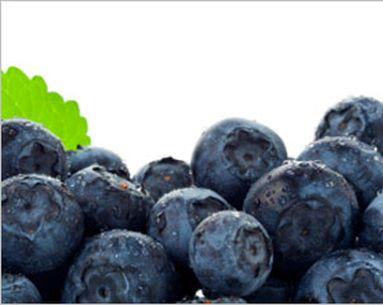 Blueberry Breakthrough