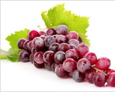 Grape News For Sun Protection