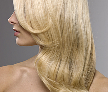 Hair Transplant 29432651 HIGH 25040183