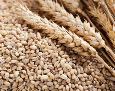 Going Gluten-Free: Healthy or Hype?