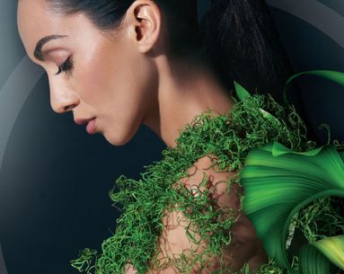 7 Natural Ingredients You Should Know