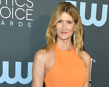 Laura Dern Coupled Her Critics' Choice Chanel Makeup With This Small-Batch Botanical Skin Care Brand