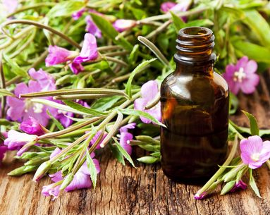 What Is Bach Flower Therapy?