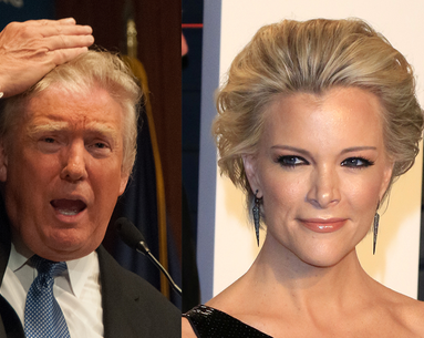 Megyn Kelly Has the Answer to Donald Trump's Hair