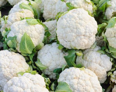 6 Reasons Cauliflower is the New Superfood