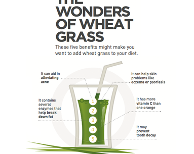 Infographic: 5 Beauty Reasons We Love Wheat Grass